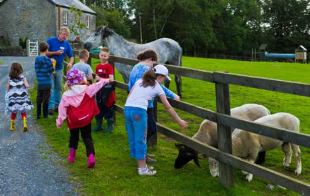 kids petting animals at a pet farm